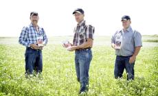 Three Farmers