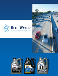 Bluewater Group Brochure