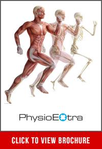 physio extra brochure
