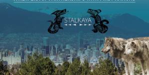 Stalkaya Group