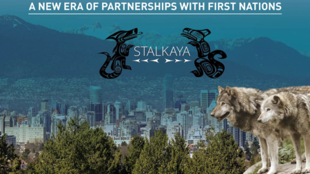 Stalkaya Group