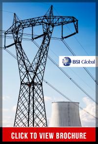 BSI Global