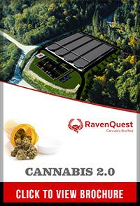 ravenquest-brochure