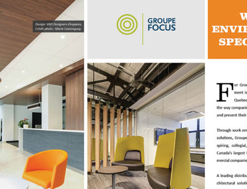 Groupe Focus